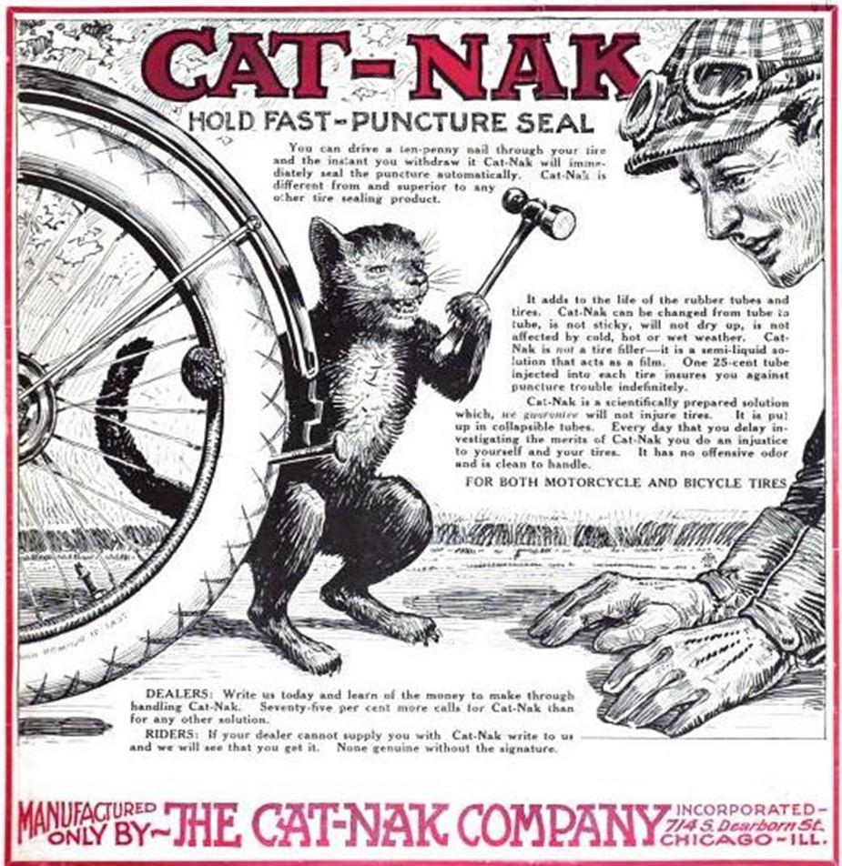 cat-nak